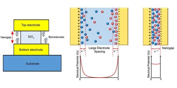 label-free nanogap biosensor