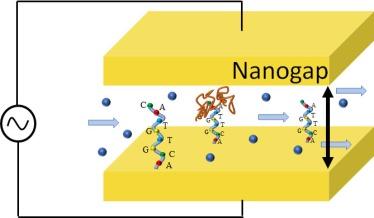 nano_biosensor